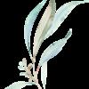 BreezyFloralElements_014 (1)
